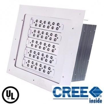 Cree Canopy LED